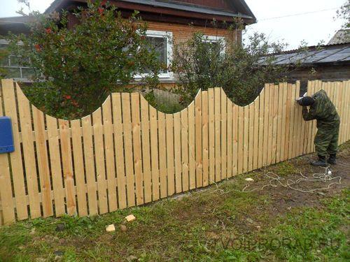 Забор шпалерный своими руками фото 739