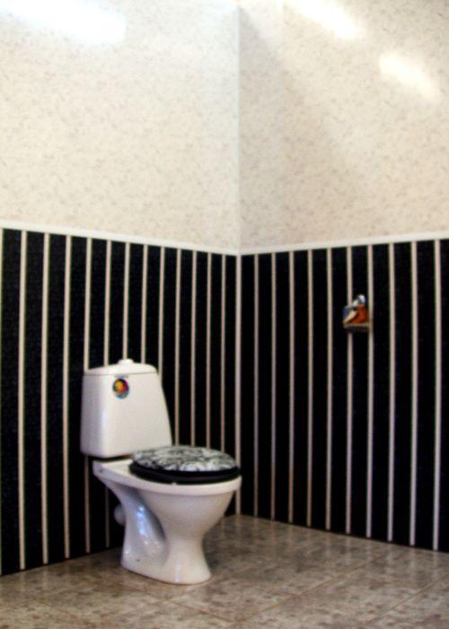 vagonka_v_tualete_02